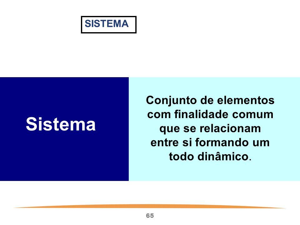 65 Sistema Conjunto de elementos com finalidade comum que se relacionam entre si formando um todo dinâmico.