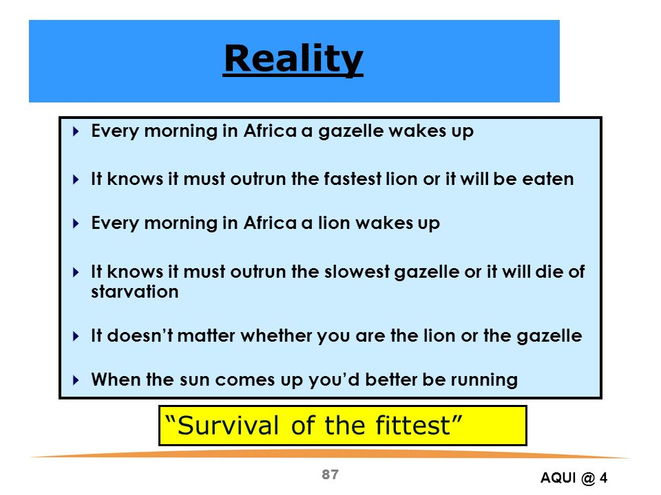 87 Every morning in Africa a gazelle wakes up It knows it must outrun the fastest lion or it will be eaten Every morning in Africa a lion wakes up It knows it must outrun the slowest gazelle or it will die of starvation It doesnt matter whether you are the lion or the gazelle When the sun comes up youd better be running Survival of the fittest Reality AQUI @ 4