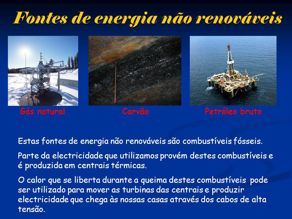 Fontes de energia não renováveis Gás naturalPetróleo brutoCarvão Estas fontes de energia não renováveis são combustíveis fósseis. Parte da electricida
