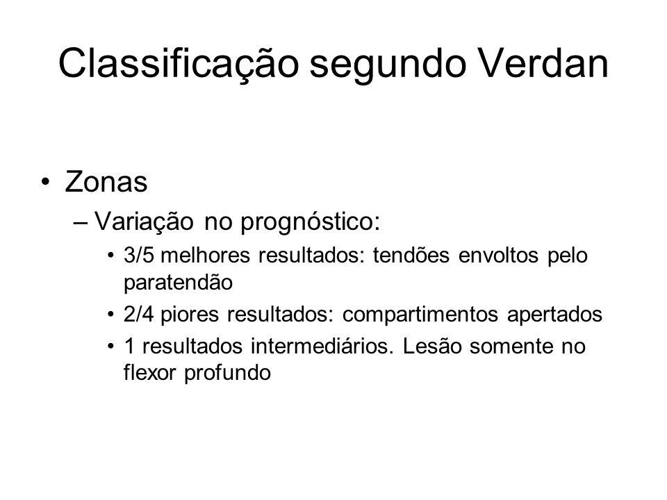 Classificação segundo Verdan Zonas –Variação no prognóstico: 3/5 melhores resultados: tendões envoltos pelo paratendão 2/4 piores resultados: compartimentos apertados 1 resultados intermediários.