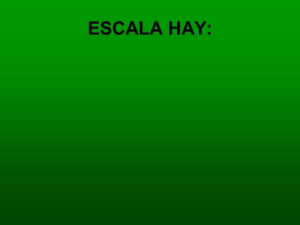 ESCALA HAY: