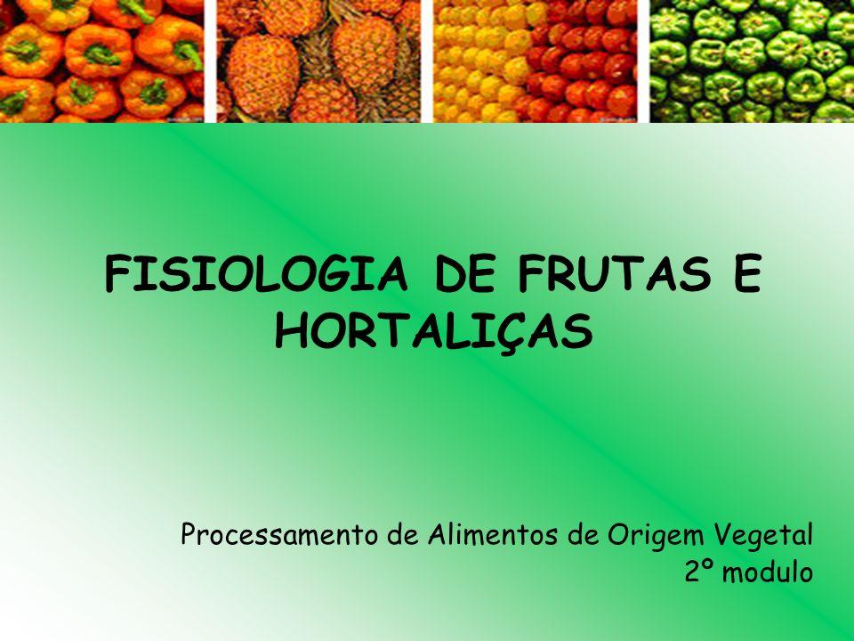 FISIOLOGIA DE FRUTAS E HORTALIÇAS Processamento de Alimentos de Origem Vegetal 2º modulo
