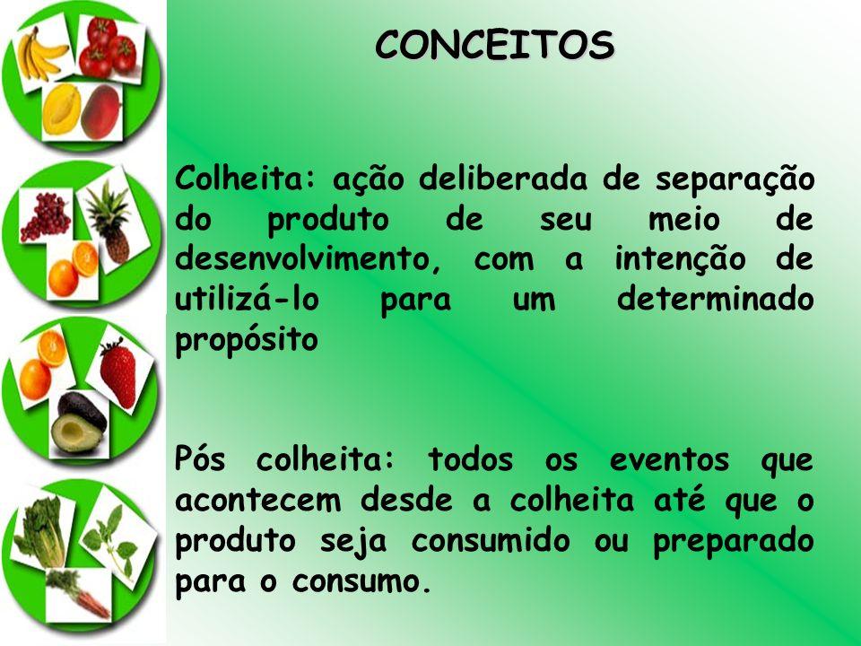 CONCEITOS Colheita: ação deliberada de separação do produto de seu meio de desenvolvimento, com a intenção de utilizá-lo para um determinado propósito