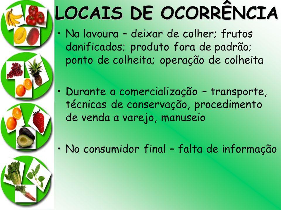 LOCAIS DE OCORRÊNCIA Na lavoura – deixar de colher; frutos danificados; produto fora de padrão; ponto de colheita; operação de colheita Durante a come