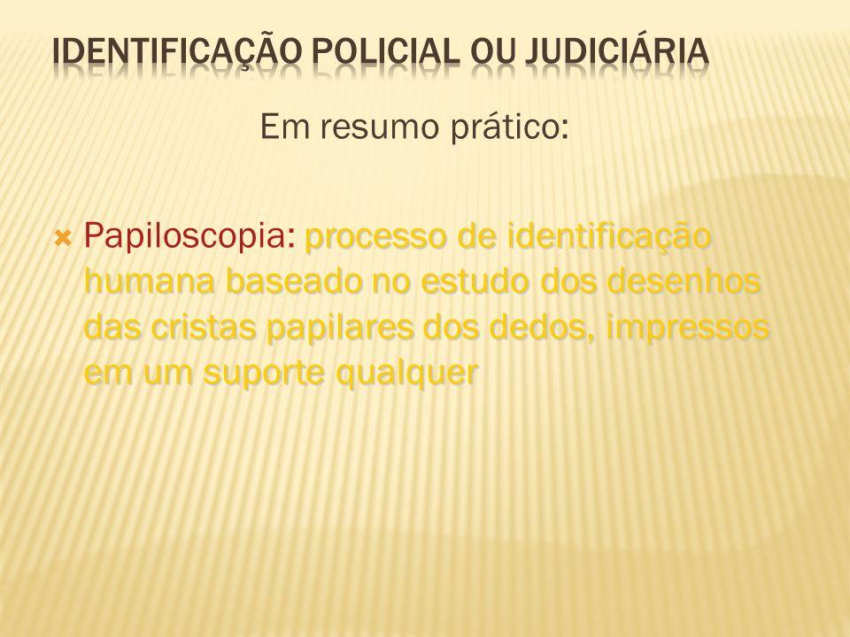DATILOSCOPIA (PAPILOSCOPIA) É um método de identificação reconhecido, aceito e adotado pelas polícias de todo o mundo A polpa dos dedos, a palma das m