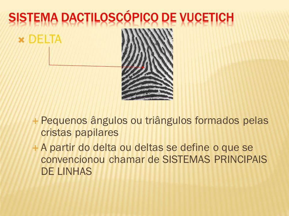 Baseia-se nas características dos 10 dedos (decadactilar) Principais elementos das impressões digitais Cristas papilares (linhas pretas) Sulcos papila