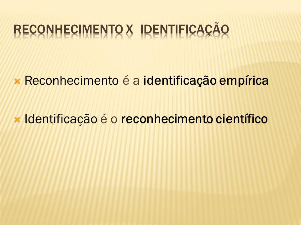 Processo (SEMPRE COMPARATIVO) pelo qual se determina a identidade de pessoa ou coisa conjunto de diligências para se levantar uma identidade Os proces