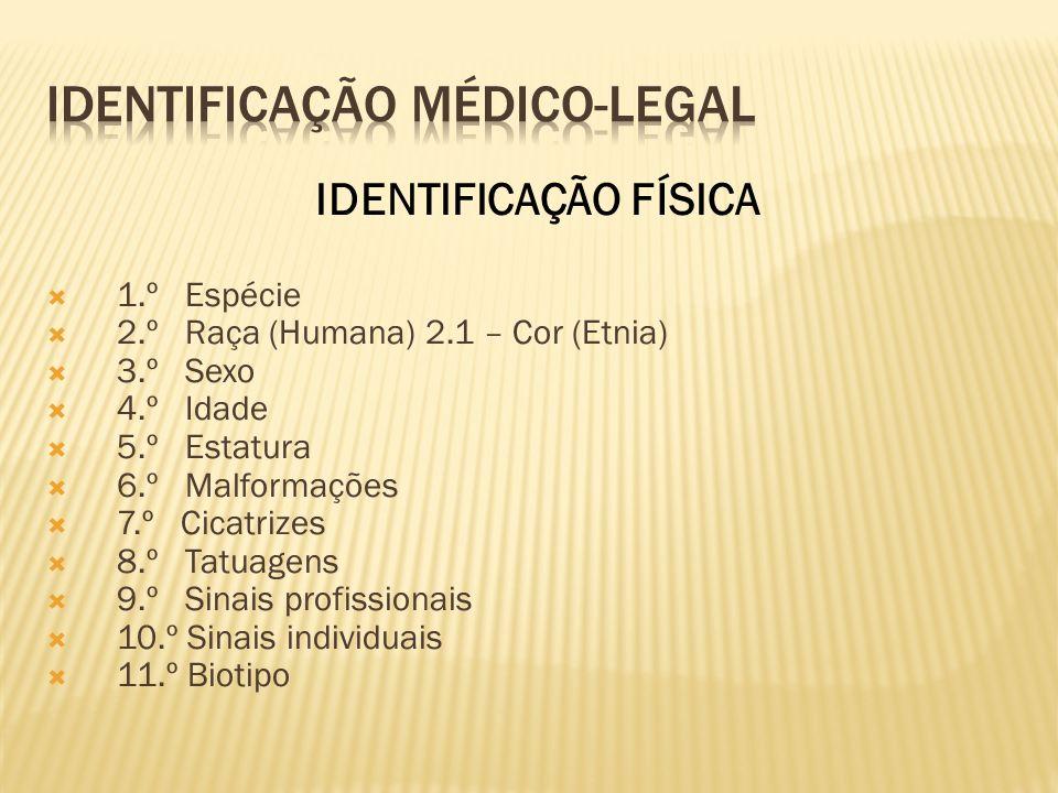 1. Médico e Odonto-Legal (ANTROPOLÓGICA) 2. Judiciária (POLICIAL)
