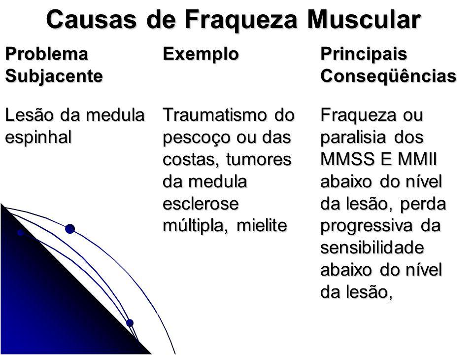 Causas de Fraqueza Muscular Problema Subjacente Exemplo Principais Conseqüências Lesão da medula espinhal Lesão da medula espinhal Traumatismo do pesc