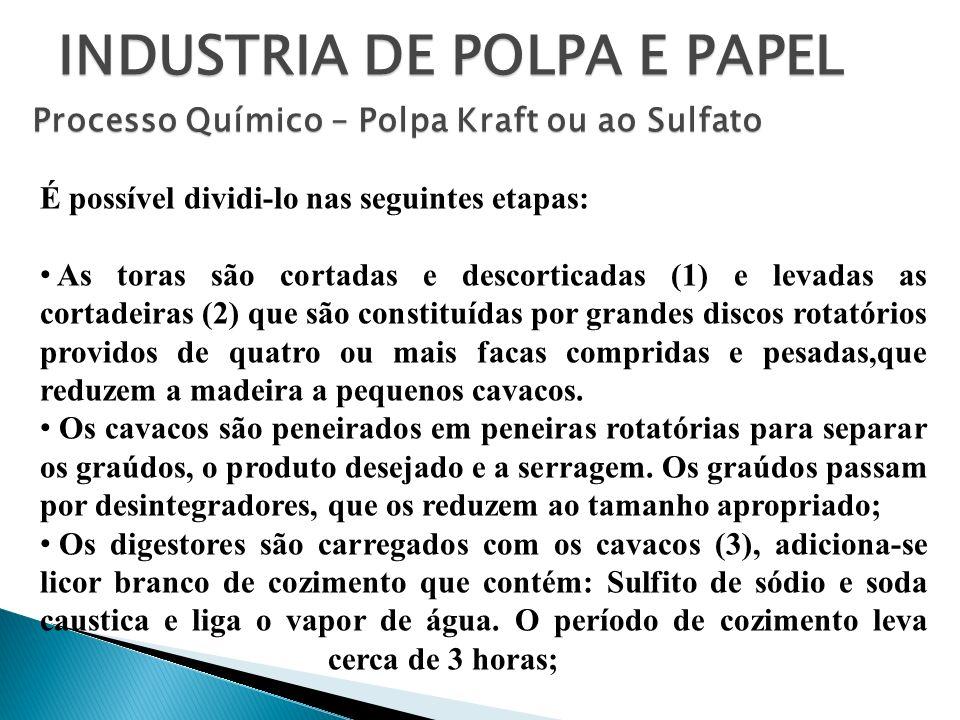 INDUSTRIA DE POLPA E PAPEL Processo Químico – Polpa Kraft ou ao Sulfato É possível dividi-lo nas seguintes etapas: As toras são cortadas e descorticad