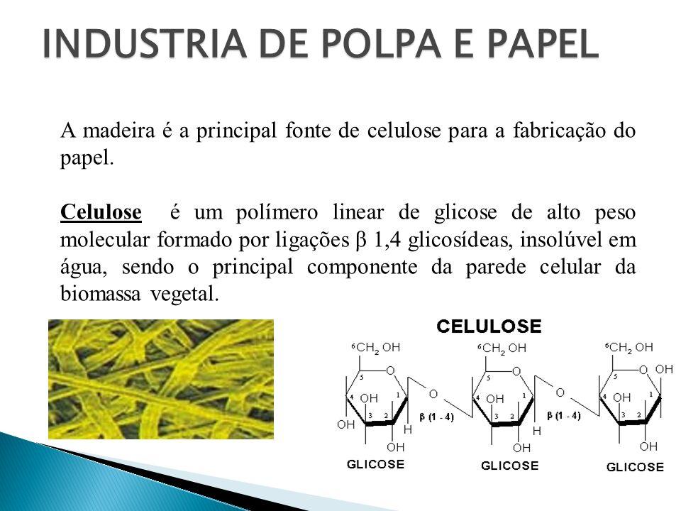 INDUSTRIA DE POLPA E PAPEL A madeira é a principal fonte de celulose para a fabricação do papel. Celulose é um polímero linear de glicose de alto peso