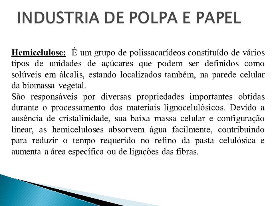INDUSTRIA DE POLPA E PAPEL Hemicelulose: É um grupo de polissacarídeos constituído de vários tipos de unidades de açúcares que podem ser definidos com