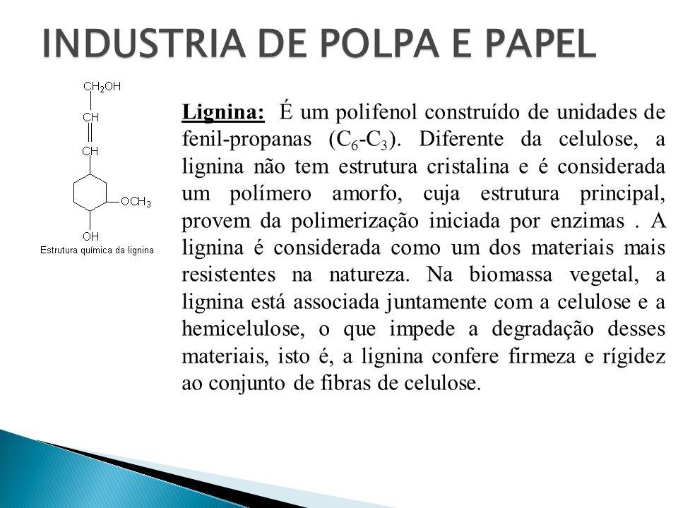 INDUSTRIA DE POLPA E PAPEL Lignina: É um polifenol construído de unidades de fenil-propanas (C 6 -C 3 ). Diferente da celulose, a lignina não tem estr