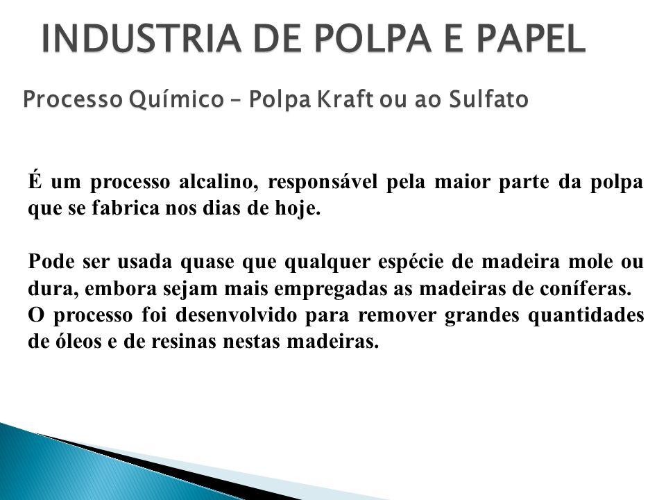 INDUSTRIA DE POLPA E PAPEL É um processo alcalino, responsável pela maior parte da polpa que se fabrica nos dias de hoje. Pode ser usada quase que qua