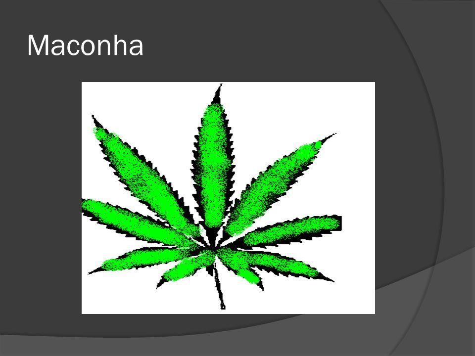 O crack deriva da planta de coca, é resultante da mistura de cocaína, bicarbonato de sódio ou amônia e água destilada, resultando em grãos que são fumados em cachimbos.