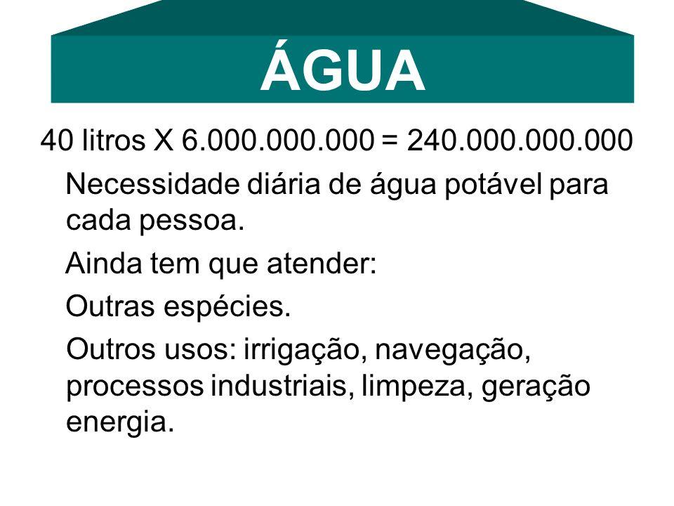 40 litros X 6.000.000.000 = 240.000.000.000 Necessidade diária de água potável para cada pessoa. Ainda tem que atender: Outras espécies. Outros usos: