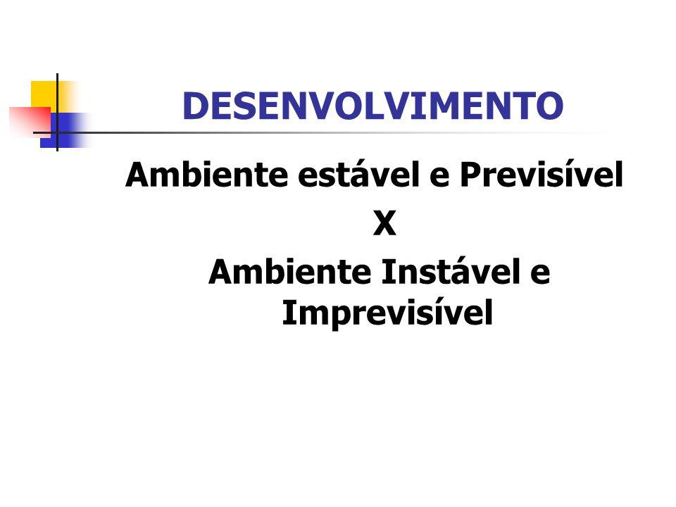 DESENVOLVIMENTO Ambiente estável e Previsível X Ambiente Instável e Imprevisível