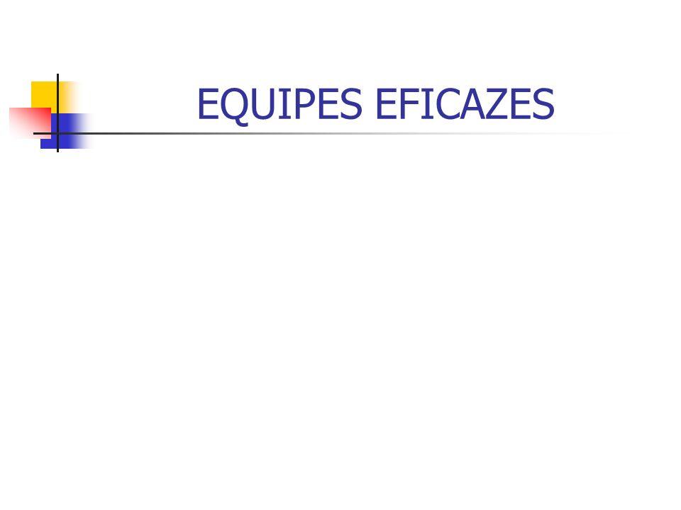 EQUIPES EFICAZES