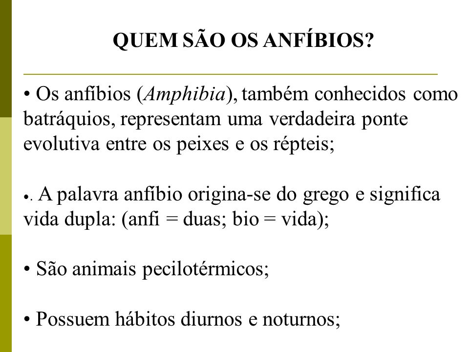 QUEM SÃO OS ANFÍBIOS? Os anfíbios (Amphibia), também conhecidos como batráquios, representam uma verdadeira ponte evolutiva entre os peixes e os répte