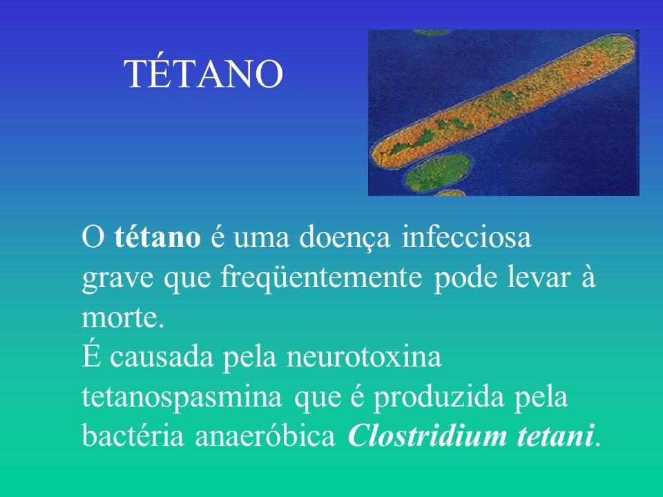 O tétano é uma doença infecciosa grave que freqüentemente pode levar à morte. É causada pela neurotoxina tetanospasmina que é produzida pela bactéria