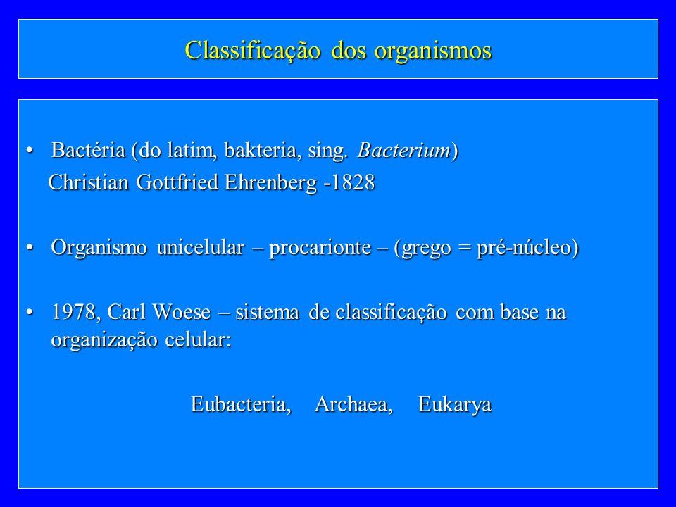 Classificação dos organismos Bactéria (do latim, bakteria, sing. Bacterium)Bactéria (do latim, bakteria, sing. Bacterium) Christian Gottfried Ehrenber
