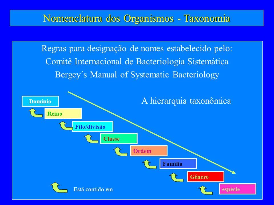 Nomenclatura dos Organismos - Taxonomia Regras para designação de nomes estabelecido pelo: Comitê Internacional de Bacteriologia Sistemática Bergey´s