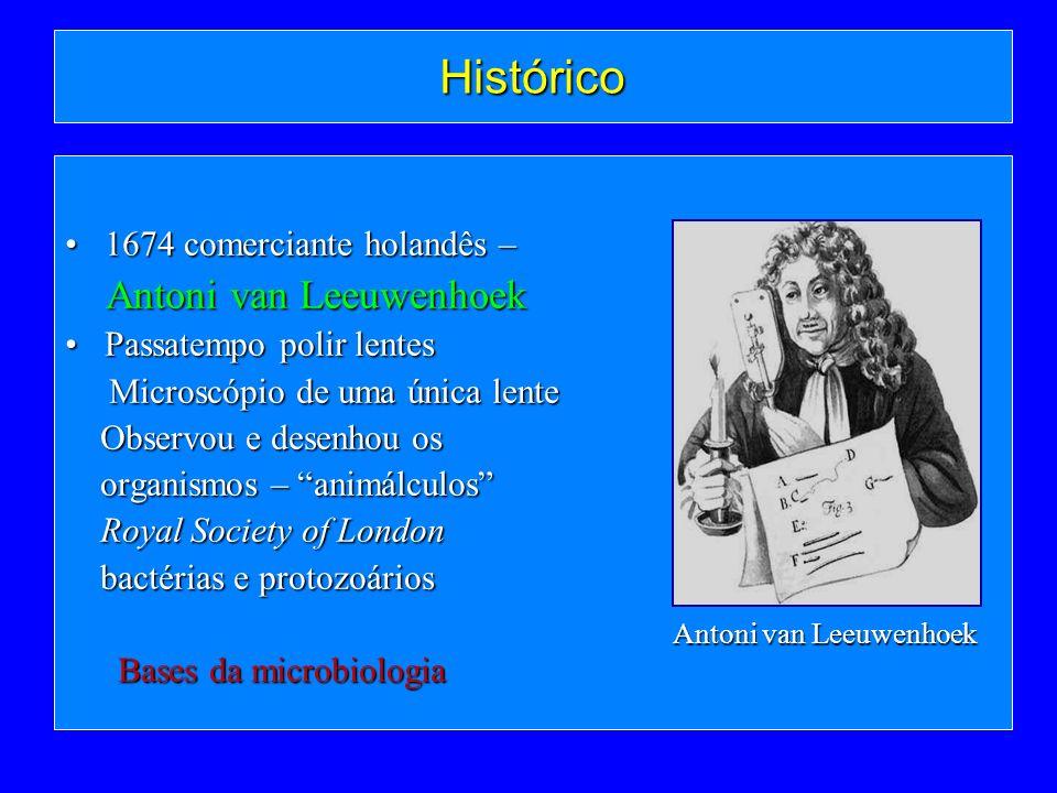 Histórico 1674 comerciante holandês –1674 comerciante holandês – Antoni van Leeuwenhoek Antoni van Leeuwenhoek Passatempo polir lentesPassatempo polir
