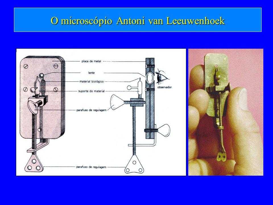 O microscópio Antoni van Leeuwenhoek