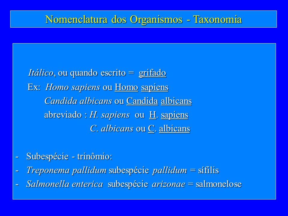 Itálico, ou quando escrito = grifado Itálico, ou quando escrito = grifado Ex: Homo sapiens ou Homo sapiens Ex: Homo sapiens ou Homo sapiens Candida al