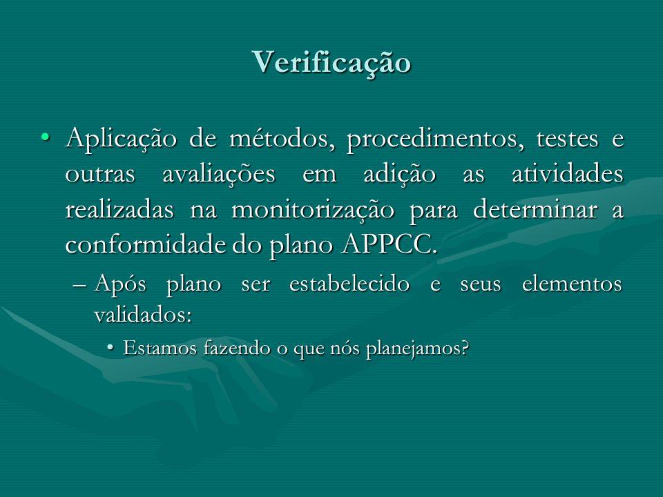 Verificação Deve ser formalizada:Deve ser formalizada: –Métodos –Freqüência –Responsabilidades –Formal avaliação dos resultados: possíveis modificações