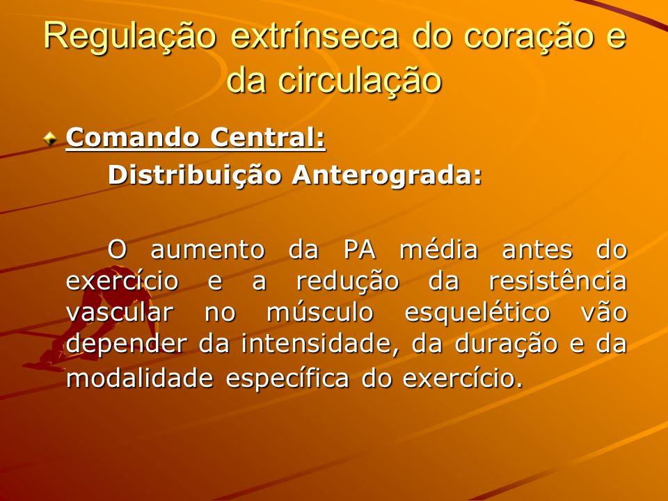 Regulação extrínseca do coração e da circulação Comando Central: Distribuição Anterograda: O aumento da PA média antes do exercício e a redução da res