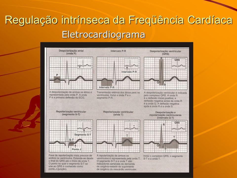 Regulação intrínseca da Freqüência Cardíaca Eletrocardiograma