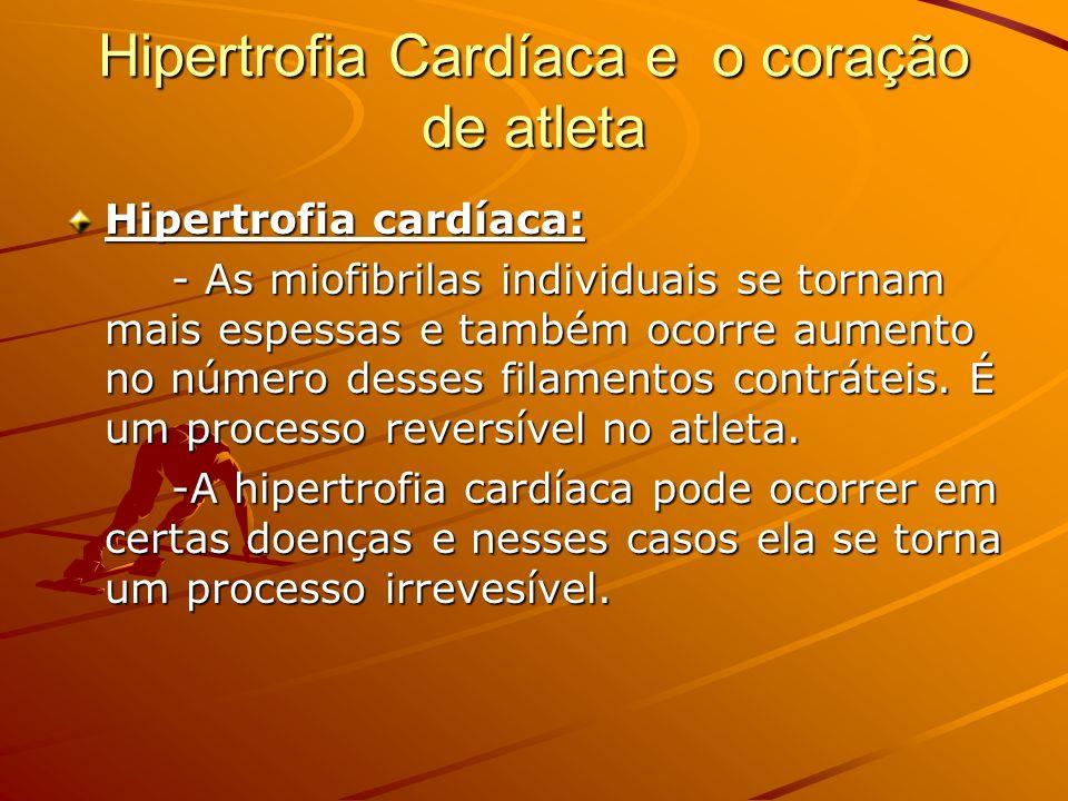Hipertrofia Cardíaca e o coração de atleta Hipertrofia cardíaca: - As miofibrilas individuais se tornam mais espessas e também ocorre aumento no númer