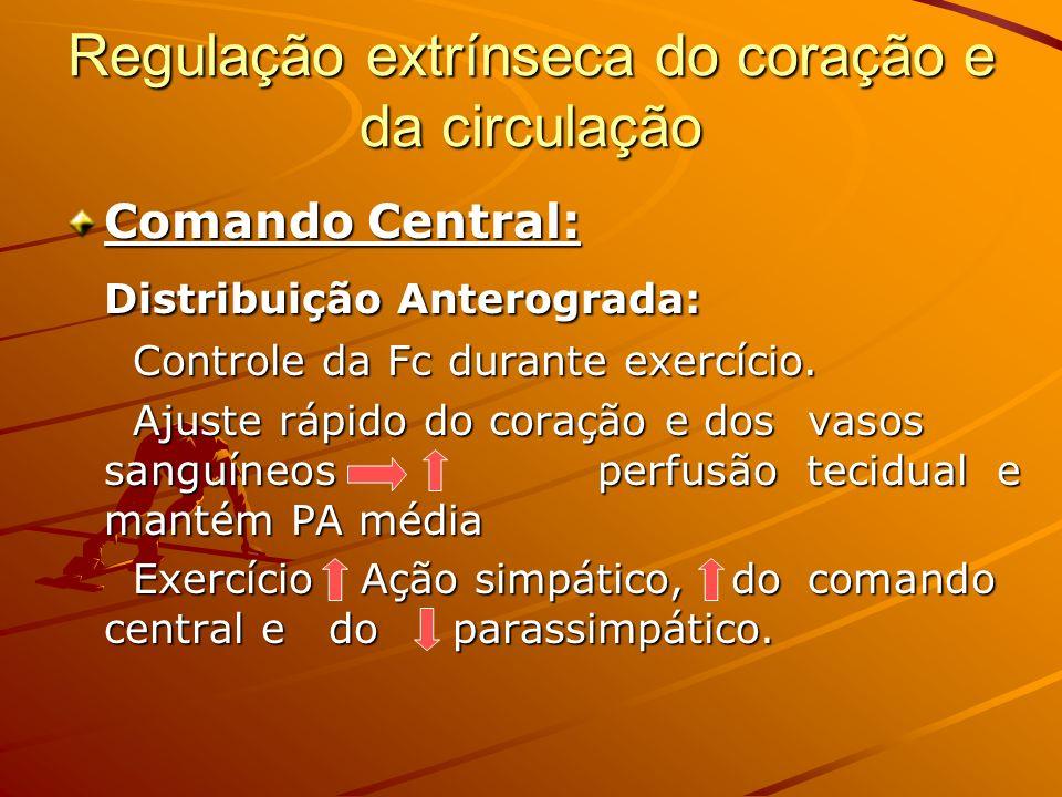 Regulação extrínseca do coração e da circulação Comando Central: Distribuição Anterograda: Controle da Fc durante exercício. Controle da Fc durante ex