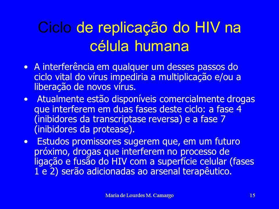 Maria de Lourdes M. Camargo15 Ciclo de replicação do HIV na célula humana A interferência em qualquer um desses passos do ciclo vital do vírus impedir