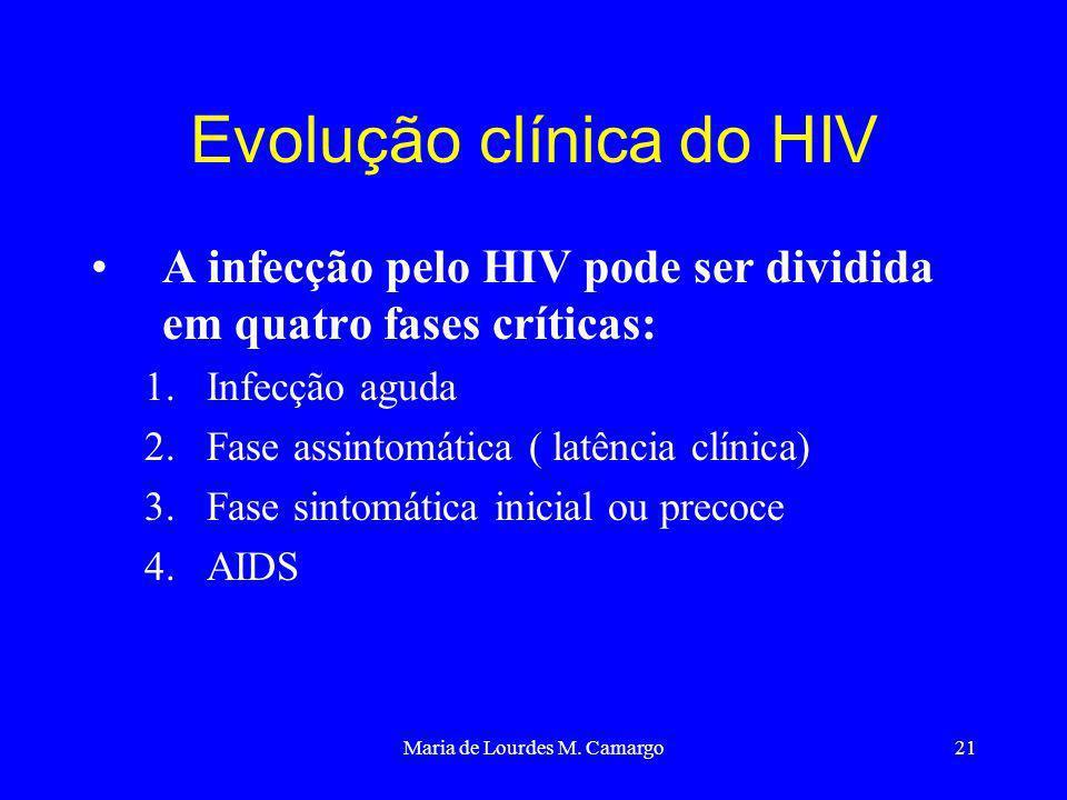 Maria de Lourdes M. Camargo21 Evolução clínica do HIV A infecção pelo HIV pode ser dividida em quatro fases críticas: 1.Infecção aguda 2.Fase assintom