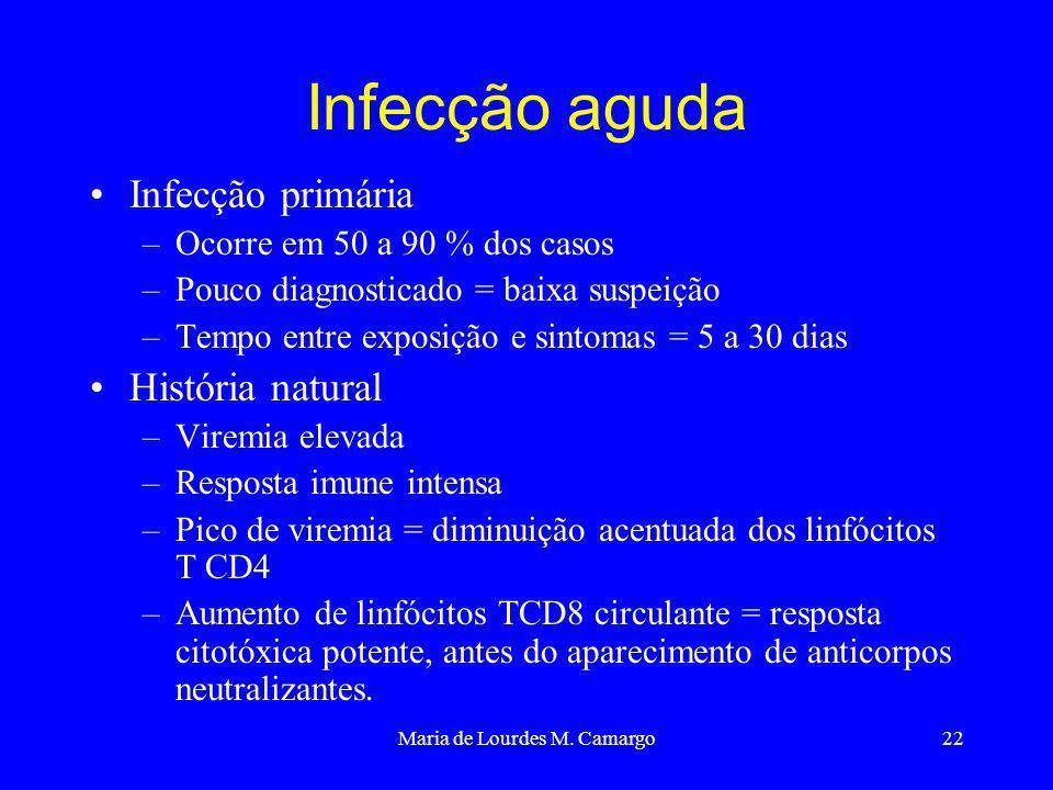Maria de Lourdes M. Camargo22 Infecção aguda Infecção primária –Ocorre em 50 a 90 % dos casos –Pouco diagnosticado = baixa suspeição –Tempo entre expo