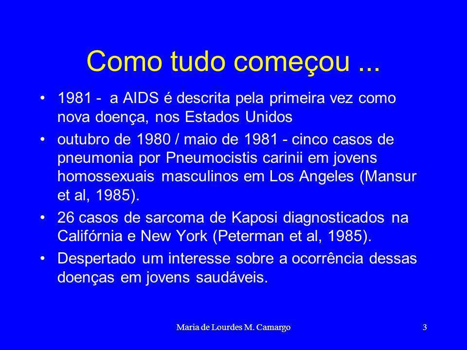 Maria de Lourdes M. Camargo3 Como tudo começou... 1981 - a AIDS é descrita pela primeira vez como nova doença, nos Estados Unidos outubro de 1980 / ma