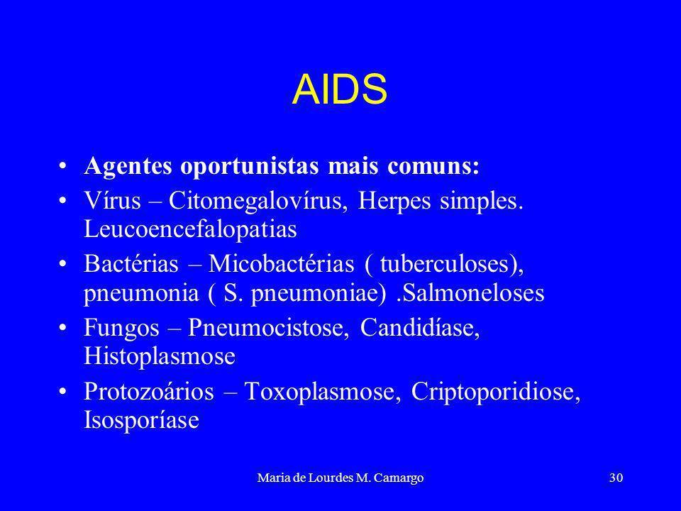 Maria de Lourdes M. Camargo30 AIDS Agentes oportunistas mais comuns: Vírus – Citomegalovírus, Herpes simples. Leucoencefalopatias Bactérias – Micobact