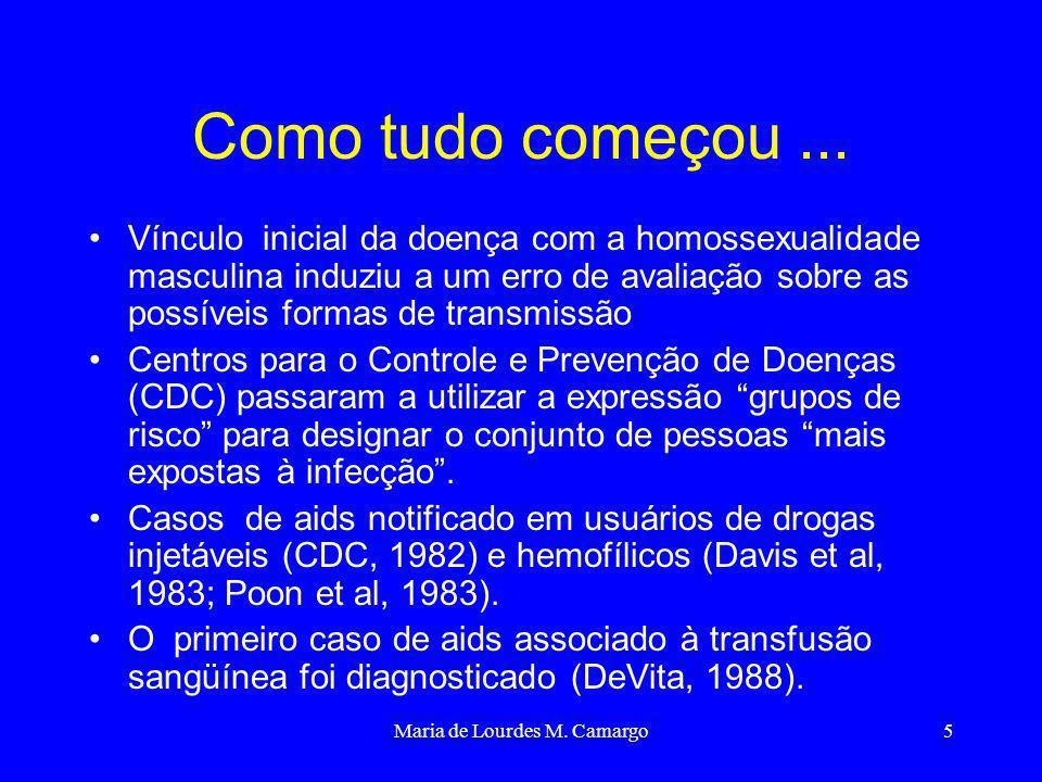 Maria de Lourdes M. Camargo5 Como tudo começou... Vínculo inicial da doença com a homossexualidade masculina induziu a um erro de avaliação sobre as p