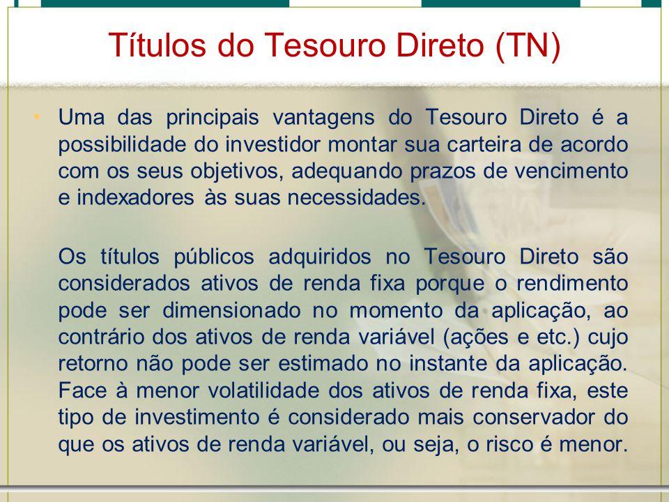 Títulos do Tesouro Direto (TN) Uma das principais vantagens do Tesouro Direto é a possibilidade do investidor montar sua carteira de acordo com os seu