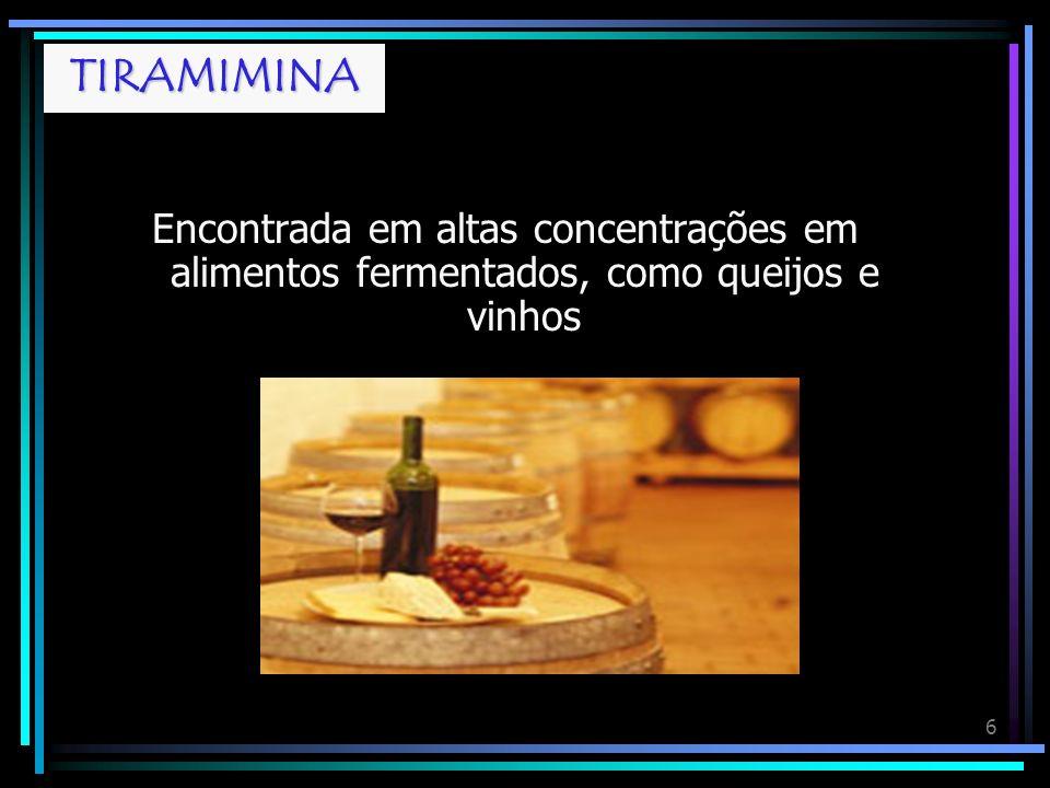 6 TIRAMINA Encontrada em altas concentrações em alimentos fermentados, como queijos e vinhos TIRAMIMINA