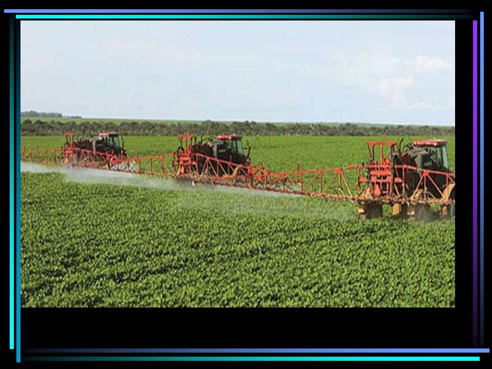 Irrigação excessiva Reduzir a utilização de nutrientes pela planta por causa da diluição.