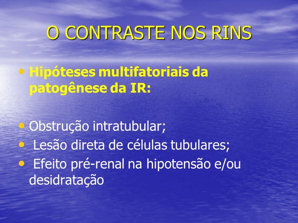 O CONTRASTE NOS RINS Hipóteses multifatoriais da patogênese da IR: Obstrução intratubular; Lesão direta de células tubulares; Efeito pré-renal na hipo