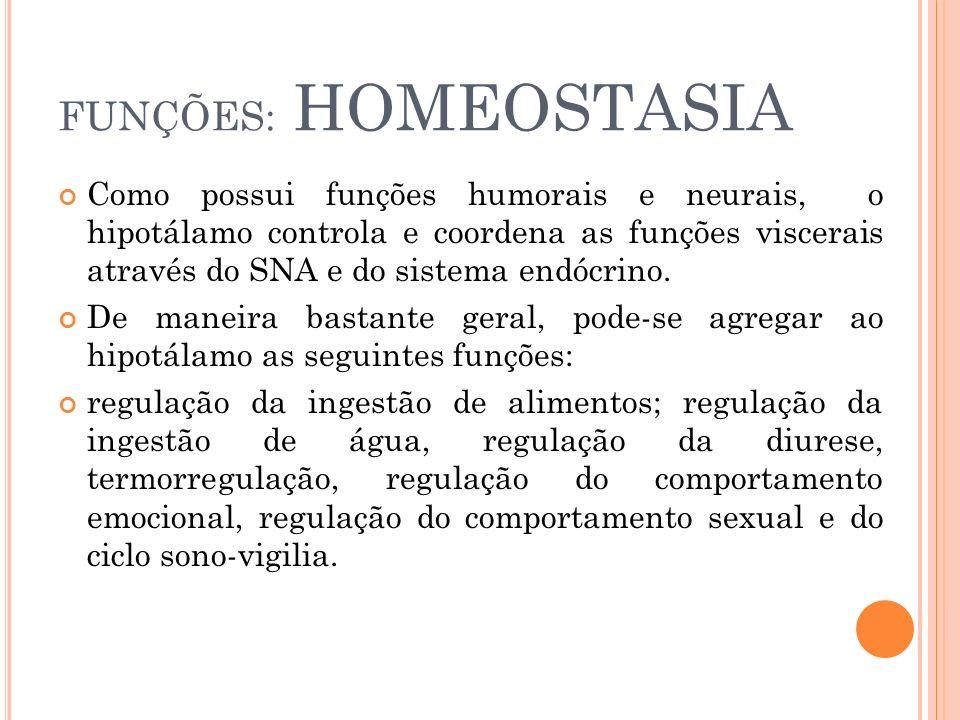FUNÇÕES: HOMEOSTASIA Como possui funções humorais e neurais, o hipotálamo controla e coordena as funções viscerais através do SNA e do sistema endócri