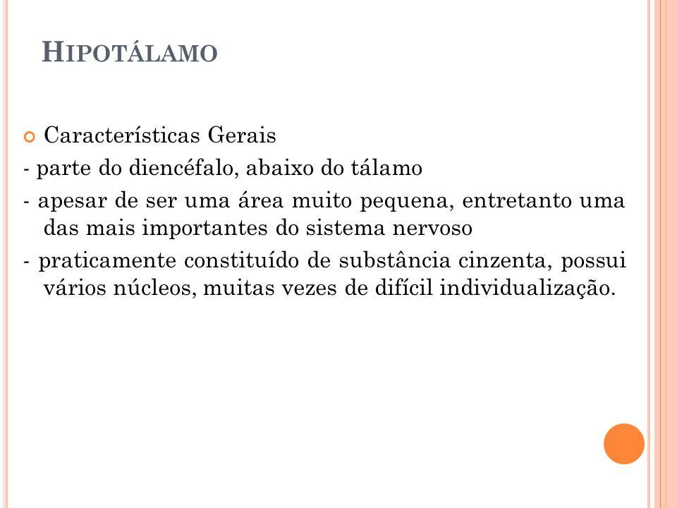 H IPOTÁLAMO Características Gerais - parte do diencéfalo, abaixo do tálamo - apesar de ser uma área muito pequena, entretanto uma das mais importantes