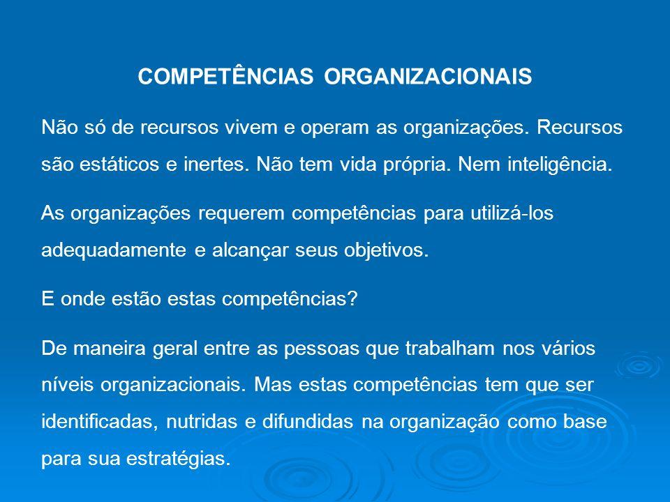 COMPETÊNCIAS ORGANIZACIONAIS Não só de recursos vivem e operam as organizações. Recursos são estáticos e inertes. Não tem vida própria. Nem inteligênc