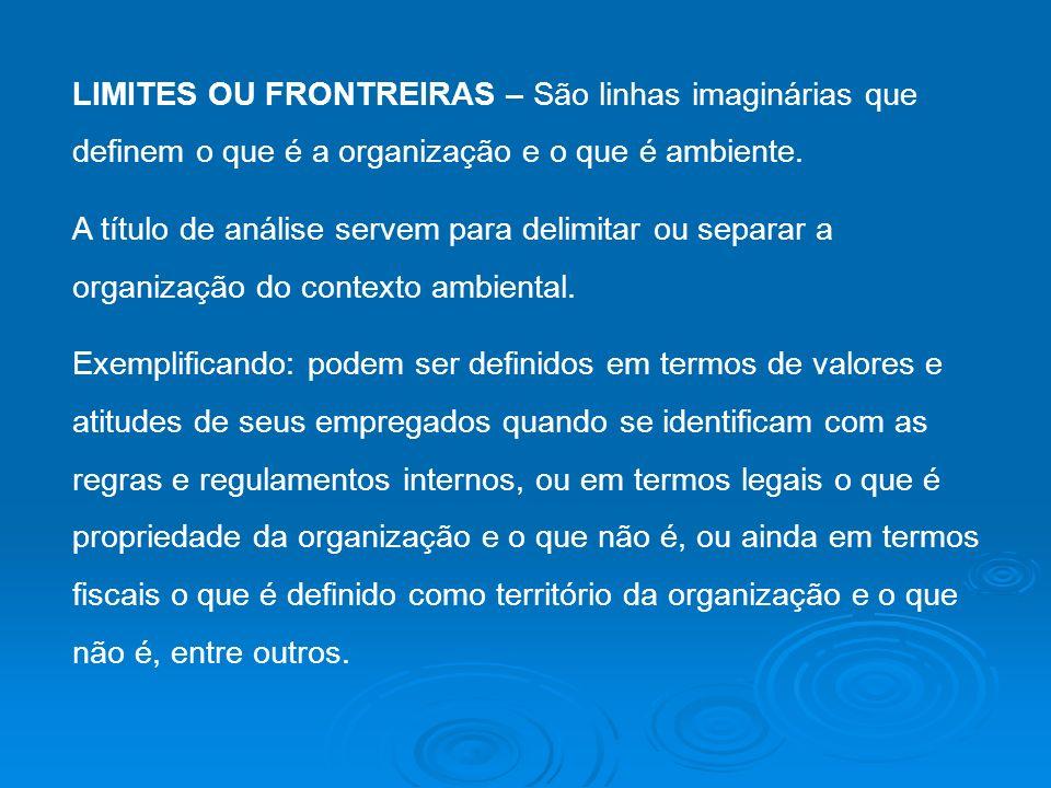LIMITES OU FRONTREIRAS – São linhas imaginárias que definem o que é a organização e o que é ambiente. A título de análise servem para delimitar ou sep