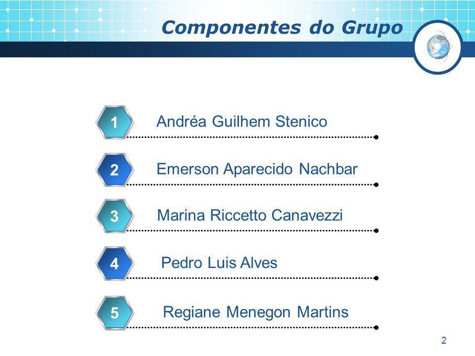 2 Componentes do Grupo Andréa Guilhem Stenico 1 Emerson Aparecido Nachbar 2 Marina Riccetto Canavezzi 3 Pedro Luis Alves 4 Regiane Menegon Martins 5