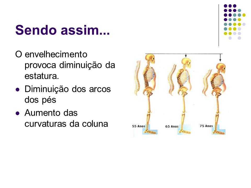 Sendo assim... O envelhecimento provoca diminuição da estatura. Diminuição dos arcos dos pés Aumento das curvaturas da coluna